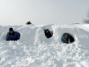 3-in-snow-fort.jpg