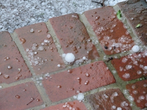 hail-2