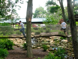 T chasing Josh on bridge