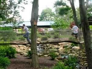 T chasing Josh on bridge
