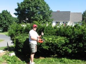 C trimming bushes